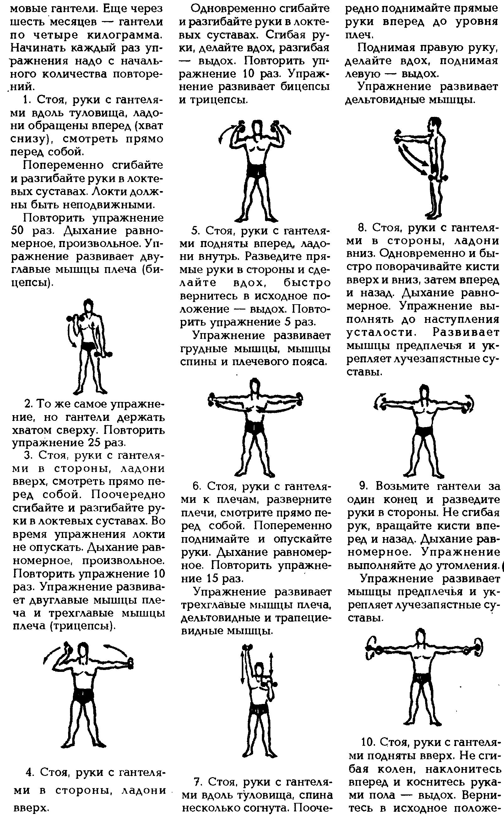 гантельная гимнастика евгения сандова картинки порода гордость