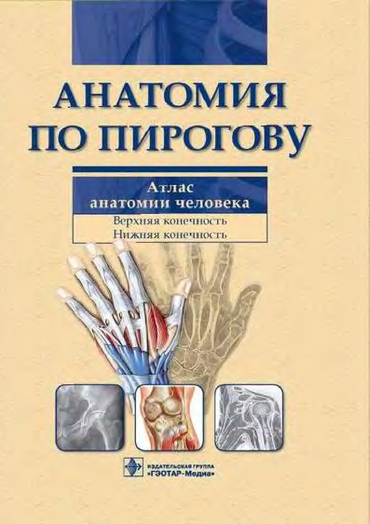 АТЛАС ЛУЧЕВОЙ АНАТОМИИ ЧЕЛОВЕКА ФИЛИМОНОВ СКАЧАТЬ БЕСПЛАТНО