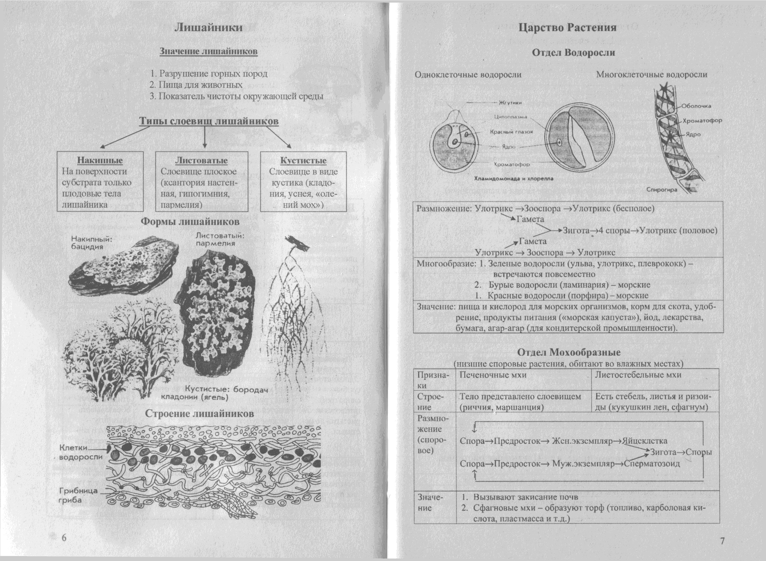 биология в картинках и схемах огэ мнению